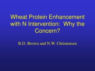 Wheat Protein Enhancement with N Intervention:  Why the Concern?