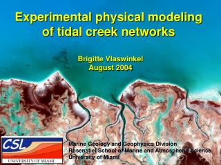 Experimental physical modeling  of tidal creek networks