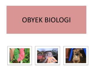 OBYEK BIOLOGI