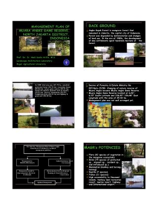 MANAGEMENT PLAN OF 	MUARA ANGKE GAME RESERVE, 		NORTH JAKARTA DISTRICT, 					INDONESIA