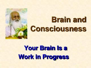 Your Brain Is a  Work in Progress