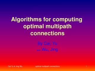 Algorithms for computing   optimal multipath connections