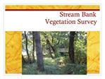 Stream Bank  Vegetation Survey