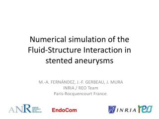 Numerical simulation of the  Fluid-Structure Interaction in stented  aneurysms