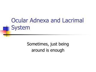 Ocular Adnexa and Lacrimal System