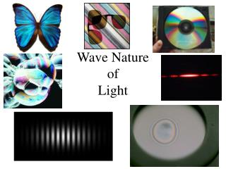 Wave Nature of  Light