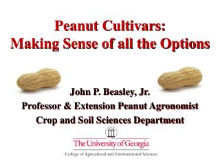 Peanut Cultivars: Making Sense of all the Options