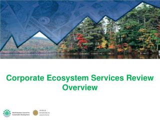 Corporate Ecosystem Services Review Overview