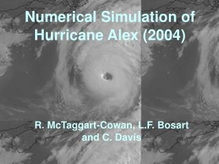 Numerical Simulation of Hurricane Alex (2004)