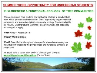 SUMMER WORK OPPORTUNITY FOR UNDERGRAD STUDENTS :