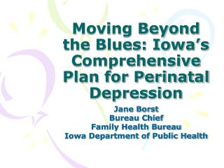 Moving Beyond the Blues: Iowa's Comprehensive Plan for Perinatal Depression