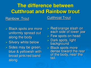 The difference between Cutthroat and Rainbow trout