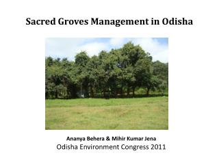 Sacred Groves Management in Odisha