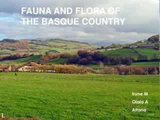 FAUNA AND FLORA OF THE BASQUE COUNTRY