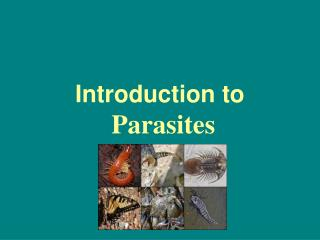 Introduction to Parasites