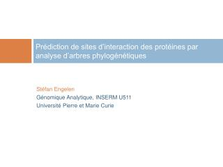 Prédiction de sites d'interaction des protéines par analyse d'arbres phylogénétiques