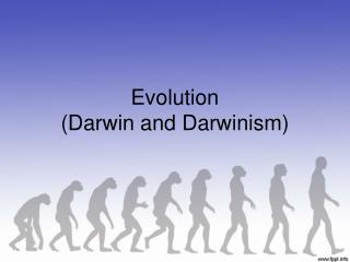 Evolution (Darwin and Darwinism)