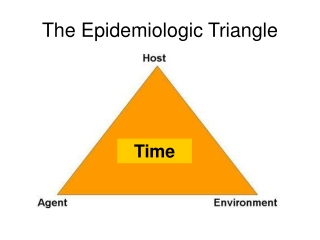 The Epidemiology