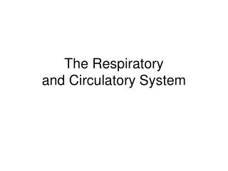 The Respiratory  and Circulatory System