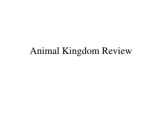 Animal Kingdom Review