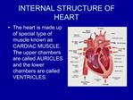 INTERNAL STRUCTURE OF HEART