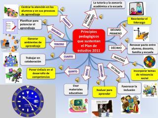 Principios pedagógicos que  sustentan el  Plan de estudios 2011