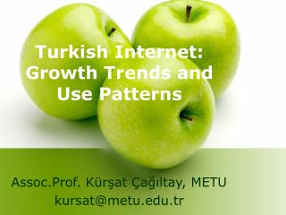 Turkish Internet: Growth Trends and Use Patterns