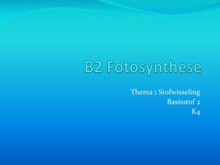 B2 Fotosynthese