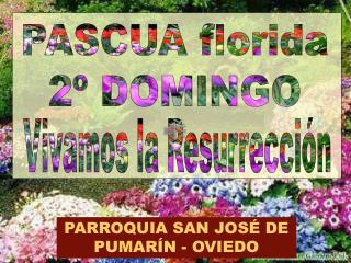 PASCUA florida 2º DOMINGO
