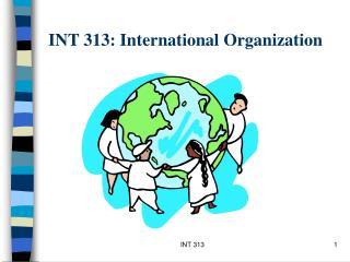 INT 313: International Organization