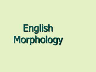 English Morphology