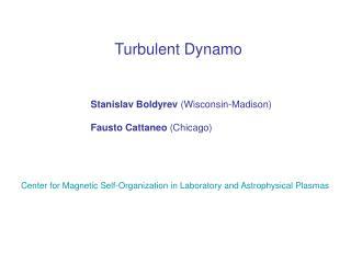 Turbulent Dynamo