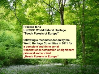 "Process for a  UNESCO World Natural Heritage  ""Beech Forests of Europe"""