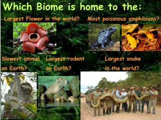 Which Biome is home to the:
