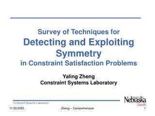 Survey of Techniques for Detecting and Exploiting  Symmetry in Constraint Satisfaction Problems