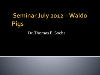 Seminar July 2012 – Waldo Pigs