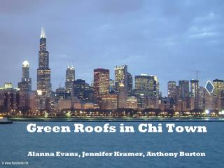 Green Roofs in Chi Town Alanna Evans, Jennifer Kramer, Anthony Burton