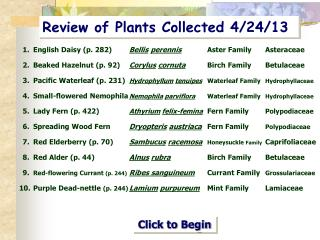 Review of Plants Collected 4/24/13