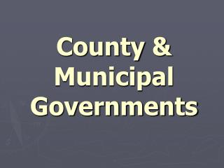 County  & Municipal Governments