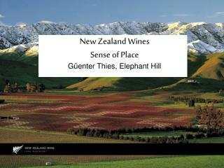 New Zealand Wines Sense of Place Güenter Thies, Elephant Hill