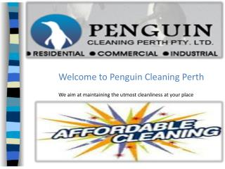 Penguincleaningperth