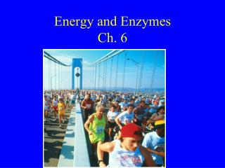 Energy and Enzymes Ch. 6