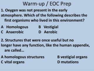 Warm-up / EOC Prep