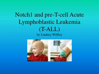 Notch1 and pre-T-cell Acute Lymphoblastic Leukemia  (T-ALL) by Lindsey Wilfley