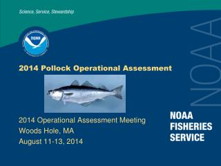2014 Pollock Operational Assessment