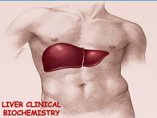 LIVER  CLINICAL BIOCHEMISTRY