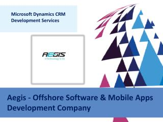 Microsoft Dynamics CRM Software Development Services