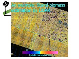 An example: Stand biomass estimation by LiDAR
