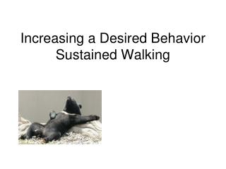 Increasing a Desired Behavior Sustained Walking
