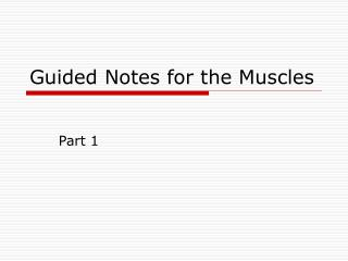 Guided Notes for the Muscles